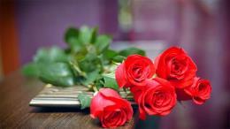 Lời chúc ngày Phụ nữ Việt Nam 20/10 dành tặng người yêu, bạn gái lãng mạn nhất