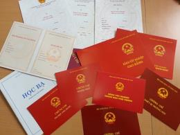 Xử lý nghiêm sai phạm của bà Trần Thị Ngọc Ái Sa và các cá nhân, tổ chức có liên quan