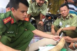 Phát hiện gần 20 kg ngà voi đang vận chuyển trái phép tại Bình Định