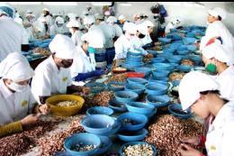Việt Nam - Nam Phi tạo sự gắn kết mở rộng thị trường xuất khẩu