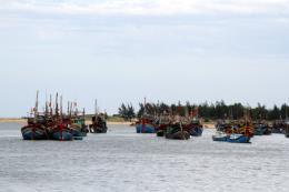 Quy trình xử lý các quy định về quản lý trên hệ thống giám sát tàu cá