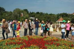Festival hoa Đà Lạt lần thứ VIII - năm 2019 diễn ra từ ngày 20 - 24/12
