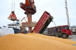 Trung Quốc sẽ đề nghị Mỹ loại bỏ thuế để đổi lấy việc mua nông sản