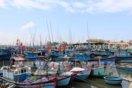 Đề xuất hỗ trợ vốn nâng cấp cảng cá đủ điều kiện xác nhận nguồn gốc thủy sản