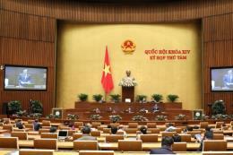 Kỳ họp thứ 8 Quốc hội khóa XIV: Tránh việc lợi dụng chính sách khi xóa nợ thuế