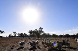 Thế khó của nhiều nước trong cuộc chiến chống biến đổi khí hậu