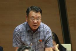 Bộ trưởng Công Thương trả lời rõ ràng, đáp ứng nguyện vọng của cử tri