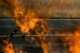 Mức độ cháy rừng ở Australia dần suy giảm