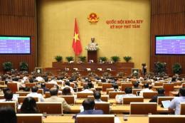 Thông qua Luật sửa đổi, bổ sung một số điều của Luật Tổ chức Chính phủ