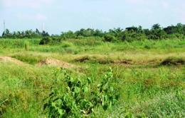 Mức phạt với hành vi hủy hoại đất