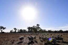 LHQ cảnh báo đây là thập kỷ nóng nhất trong lịch sử