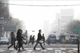 Phát triển nguồn nhân lực: Yếu tố sống còn để xây dựng thành phố thông minh