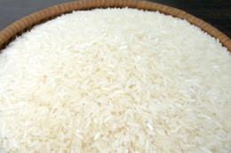Chính phủ Campuchia hỗ trợ ngành lúa gạo thêm 50 triệu USD