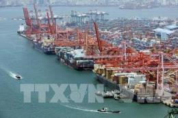 Kim ngạch xuất khẩu của Hàn Quốc lần đầu tiên giảm hai con số