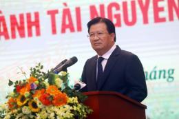 Phó Thủ tướng: Xây dựng cơ chế để khuyến khích đầu tư, tích tụ ruộng đất