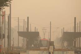 Cháy rừng tại Australia: Khói mù độc hại vẫn bao phủ các thành phố lớn