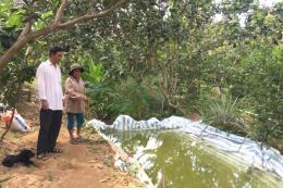 Phòng chống hạn mặn - Bài 1: Hạn mặn đến sớm đe dọa sản xuất, đời sống