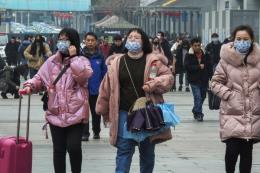 Dơi và rắn có thể là nguồn lây lan virus dịch bệnh viêm phổi do virus corona