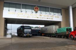 Sáng mùng 2 Tết, trên 1.300 tấn nông sản qua Cửa khẩu quốc tế Lào Cai