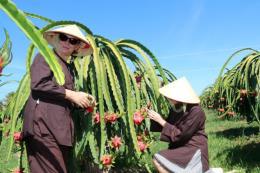 Phát triển nguồn nhân lực ngành du lịch:Bài cuối:Trang bị kỹ năng làm du lịch cho nông dân