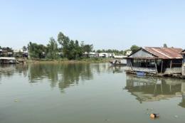Cá nuôi lồng bè trên sông Cái Vừng (An Giang) chết hàng loạt