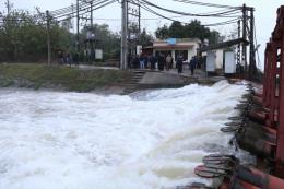 Điện lực miền Bắc đảm bảo điện cho lấy nước đổ ải, gieo cấy vụ Đông Xuân