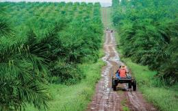 16 doanh nghiệp lớn của Mỹ khảo sát thị trường Campuchia