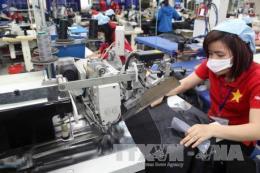 Việt Nam cam kết xóa bỏ 99% số dòng thuế nhập khẩu từ EU trong vòng 10 năm