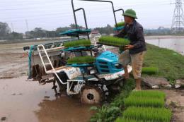 Còn khoảng 4.500 ha chưa đủ nước để gieo cấy vụ Đông Xuân