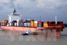 Bàn cách xử lý bất cập quản lý tàu chạy tuyến ven biển Bắc - Nam