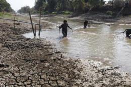 Thái Lan hỗ trợ 98 triệu USD cho nông dân bị ảnh hưởng hạn hán kéo dài
