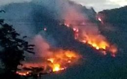 Làm rõ nguyên nhân vụ cháy rừng thông tại Đông Triều, Quảng Ninh