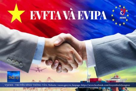 EVFTA thêm động lực cho cải cách